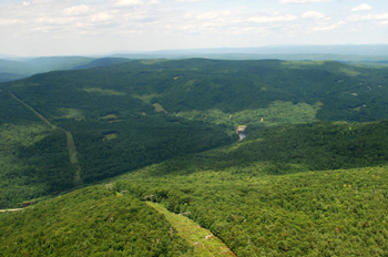 Forested Corridor Aerial